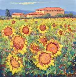 Campi di Girasole by Bruno Tinucci -  sized 12x12 inches. Available from Whitewall Galleries